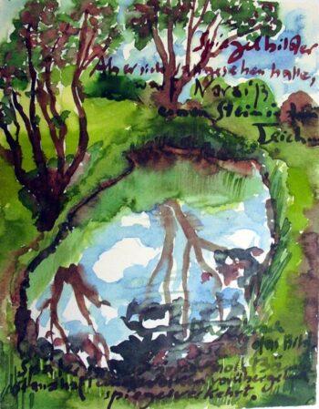 Günter Grass Spiegelbilder (Als er sich sattgesehen hatte...)