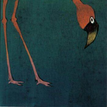 Antje Wichtrey | Flamingo