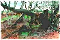 Günter Grass Waldlandschaft auf Moen