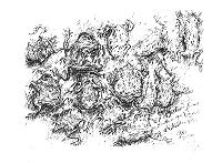 Günter Grass In diesem Sommer trocknen am Wegesrand die Kröten