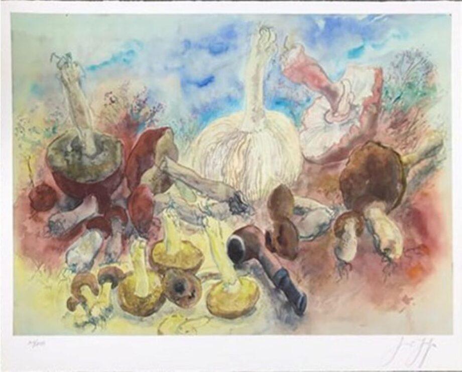 Günter Grass Pilze und meine Pfeife