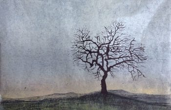 Antje Wichtrey | Mandelbaum