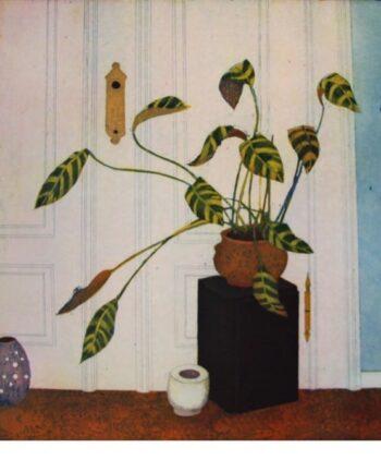 Jutta Votteler | An eine Zimmerpflanze