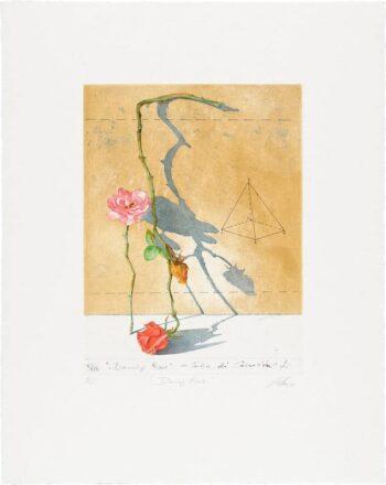 Wolfgang Zelmer | Dancing Roses