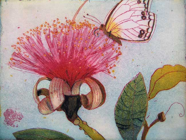 Jutta Votteler | Naschender Schmetterling