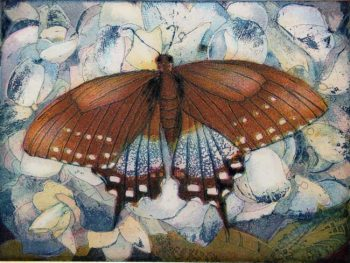 Jutta Votteler | Schmetterlingsparadies