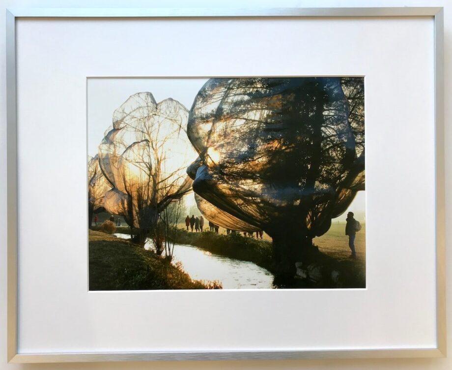 Christo Wrapped Trees - gerahmter Kunstdruck