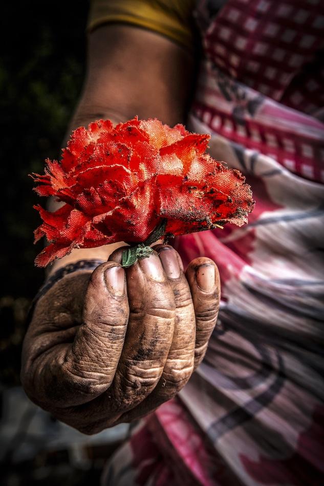 Micha Ende Blooming