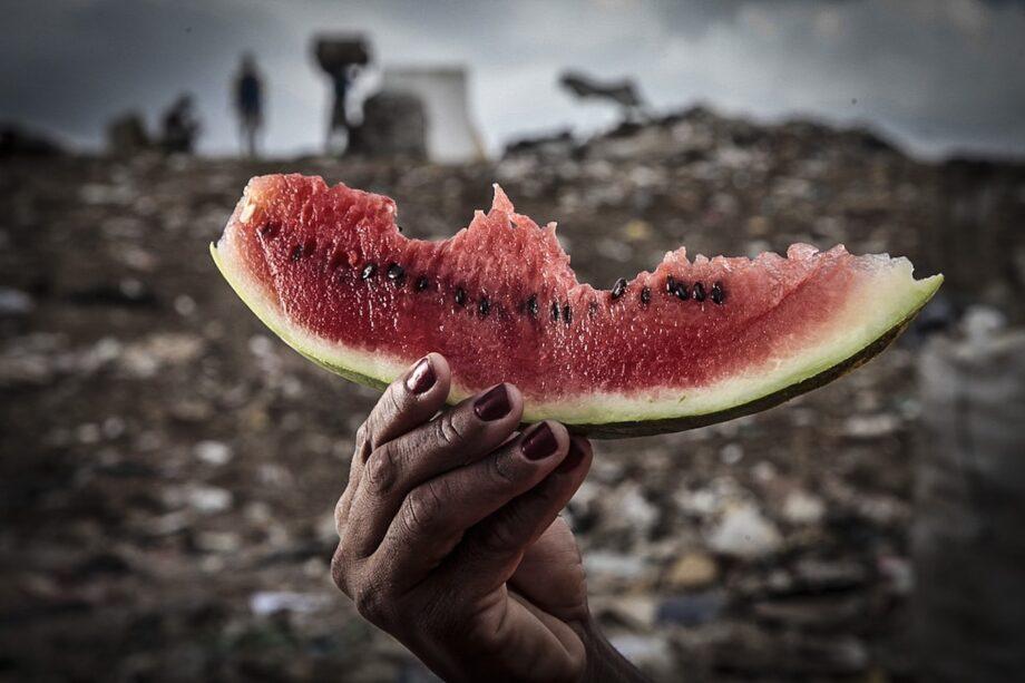 Micha Ende Forbidden Fruit