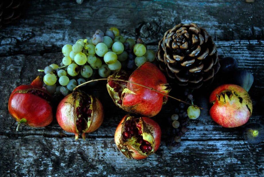 Micha Ende Fruit