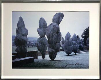 Christo Wrapped Trees 10